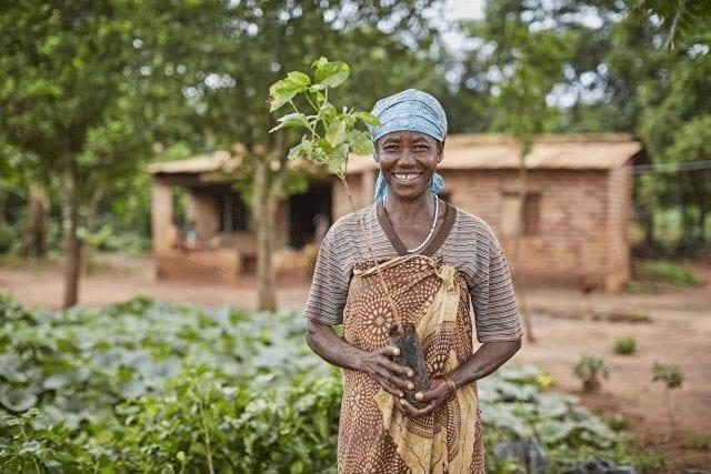 Agricultor en finca de café