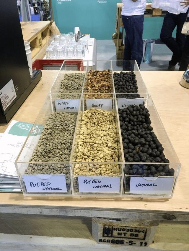 Cafés con diferentes procesamientos