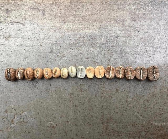 Gama de granos de café
