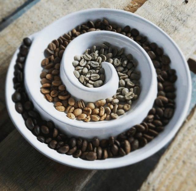 Granos de café verde y tostados