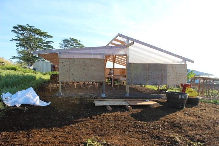 Covered raised coffee beds in Ka'u Hawaii