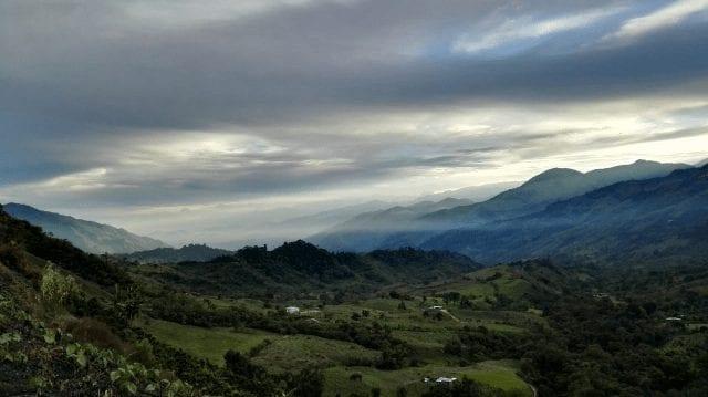 plantação na COlombia