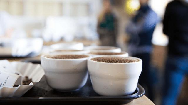 cafe listo para catar