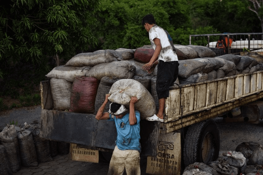 homres cargando sacos de cafe