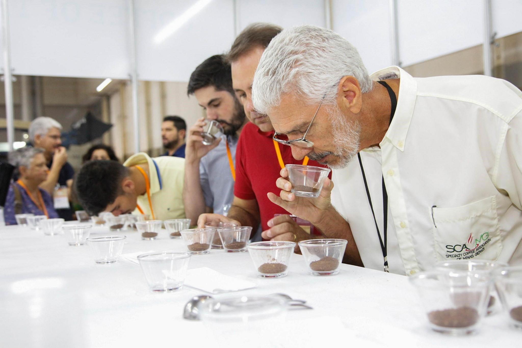 profesionales de cafe en cata de cafe de brasil