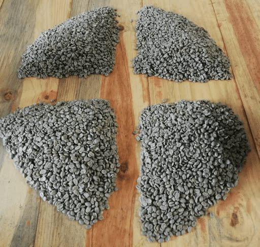 4 muestras de cafe verde para tostar