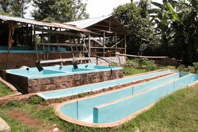 estacion de lavado en kenia