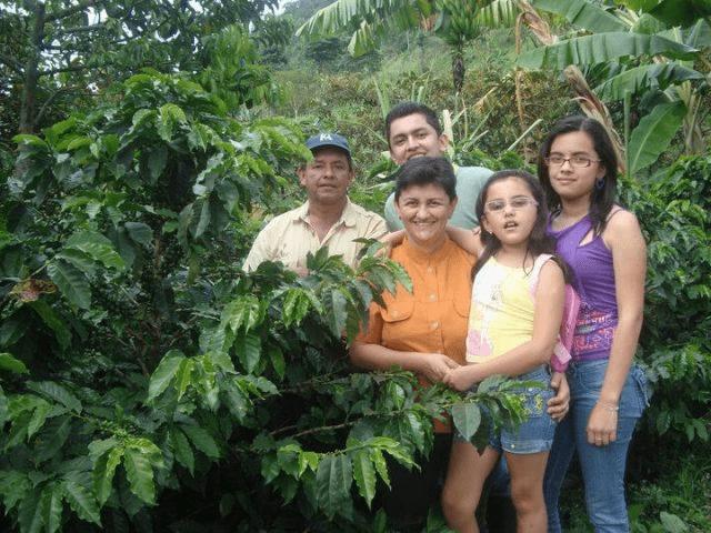 familia cafetera