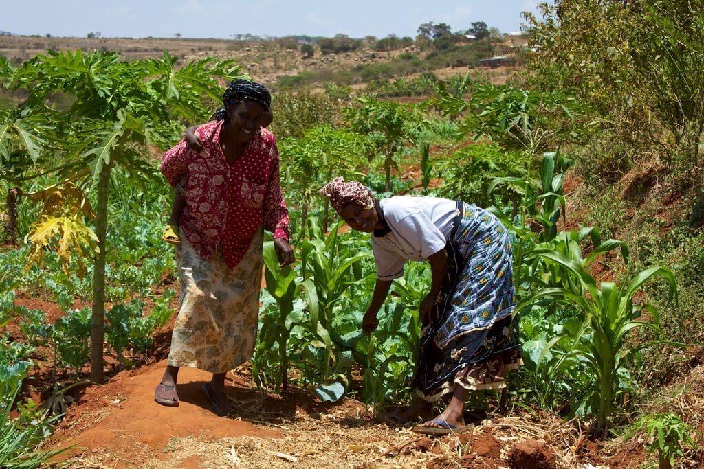 Kenyan women from the Mbini Self-Help Group.