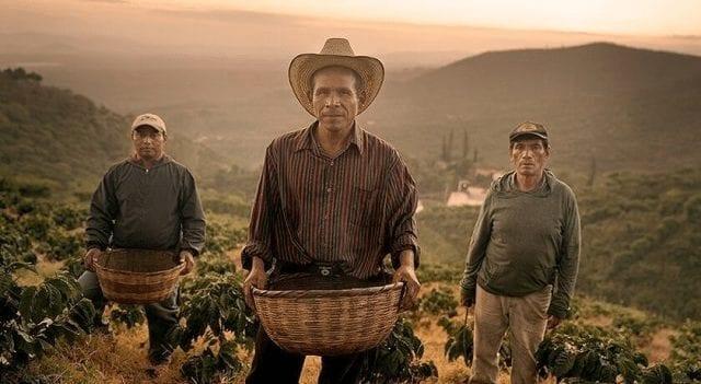 productores de cafe en el salvador