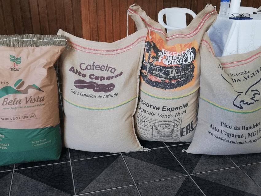 sacos cafe listos para exportar