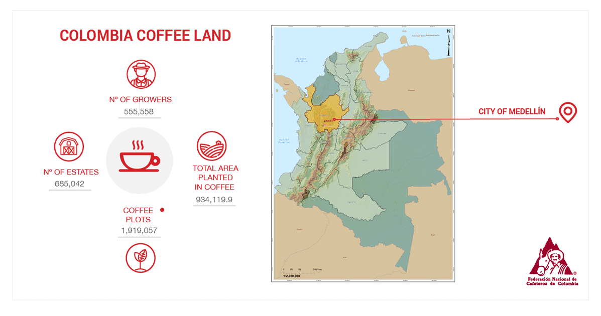Stats about coffee production in Colombia