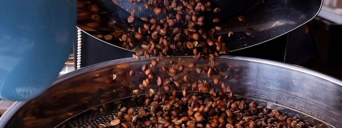 Cafe tostado vertido en la bandeja de secado