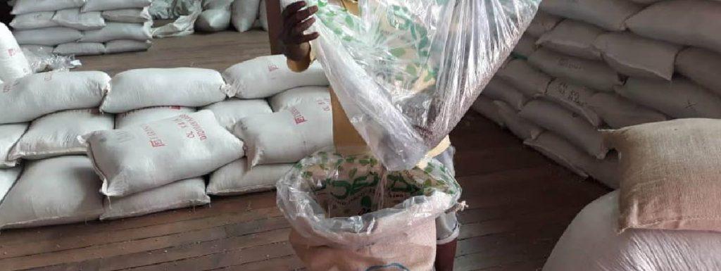 Caficultor llenando una bolsa con granos de café verde