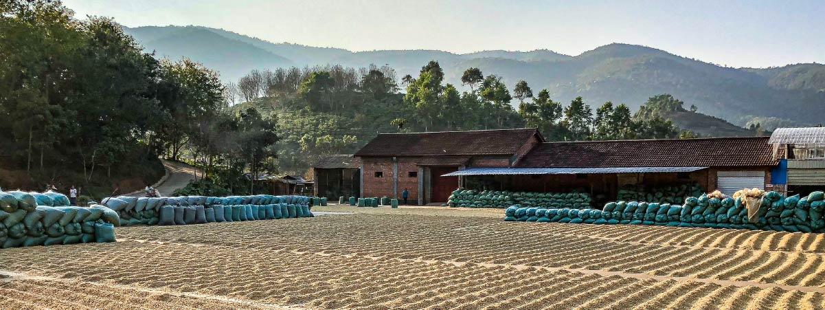 patio de secado en una finca china