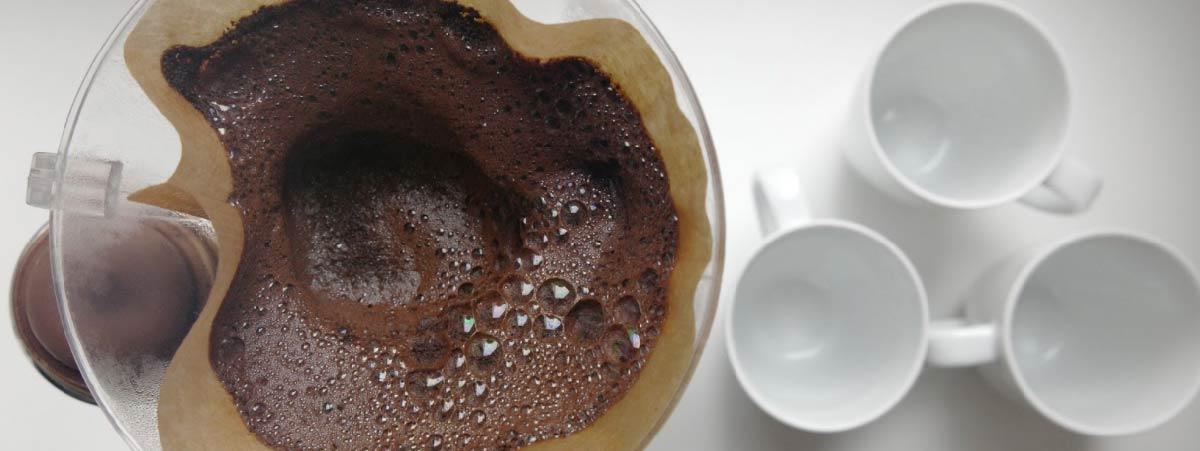 Cama de café después de haber preparado una V60