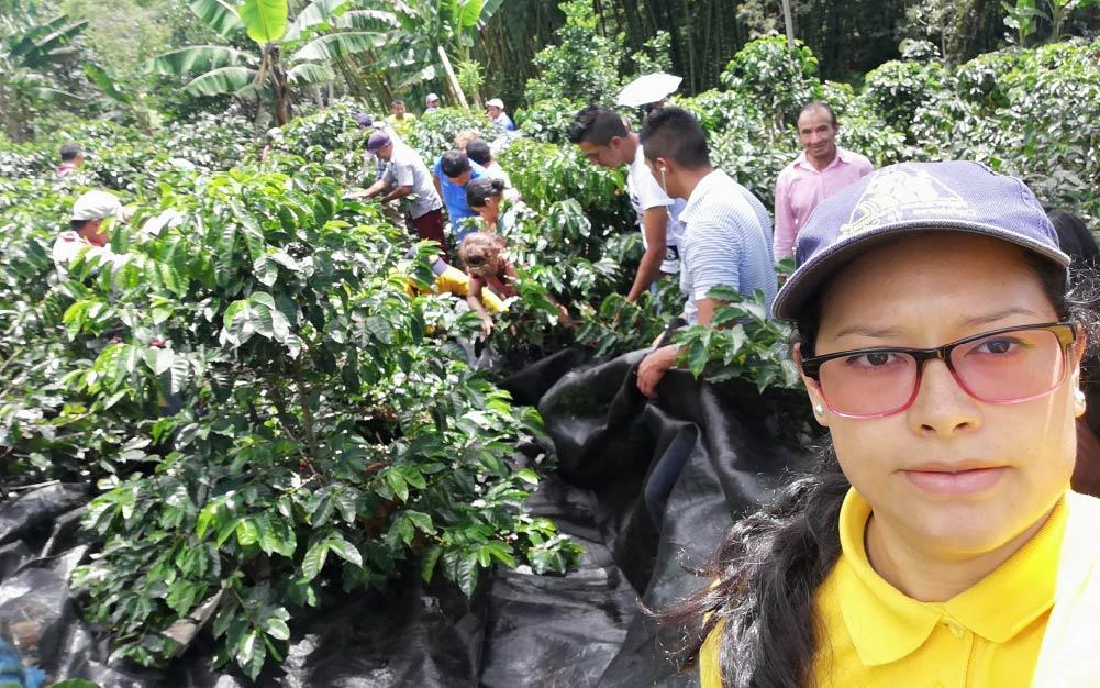 Educación países productores de café