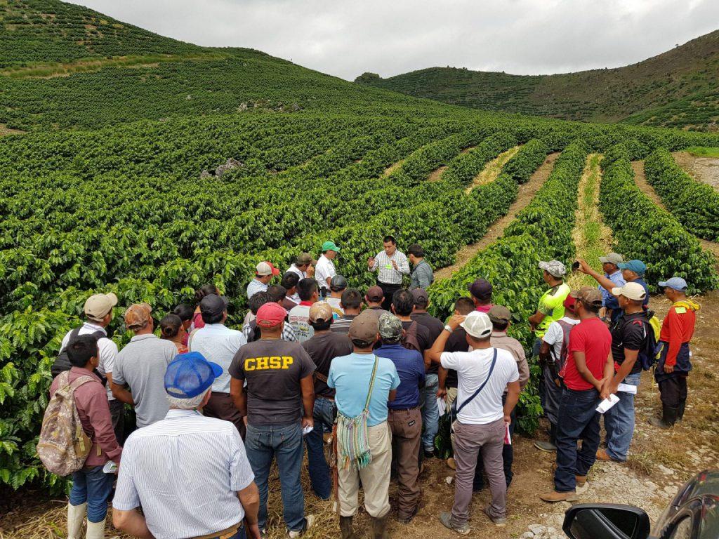 grupo de fazendeiros aprendendo sobre mapeamento de campo