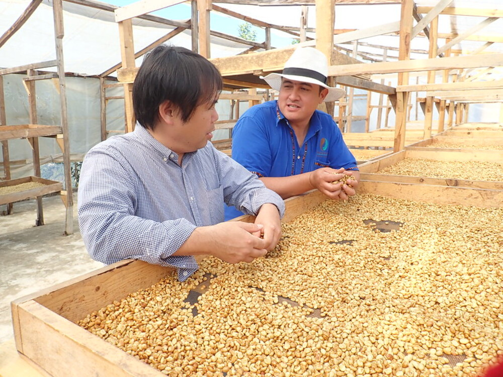 preço record - compradores asiáticos café