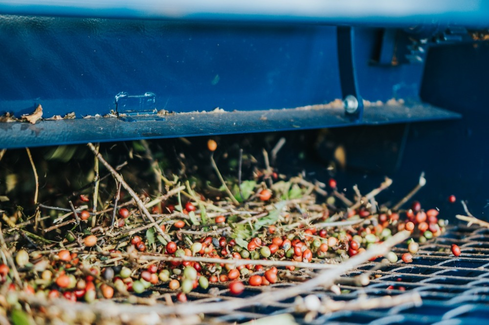 equipamentos fazenda café