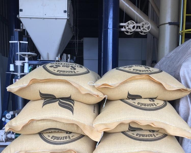comércio direto de café