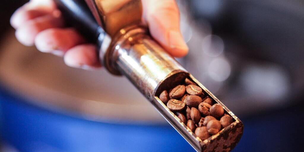 torrefação de cafés de alta pontuação