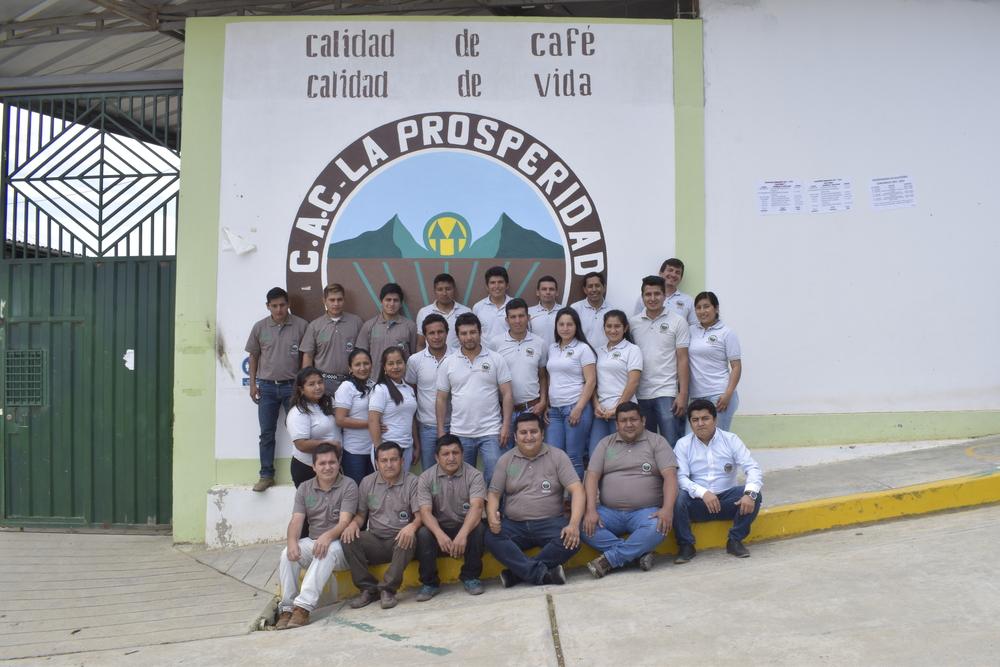 produtores de café