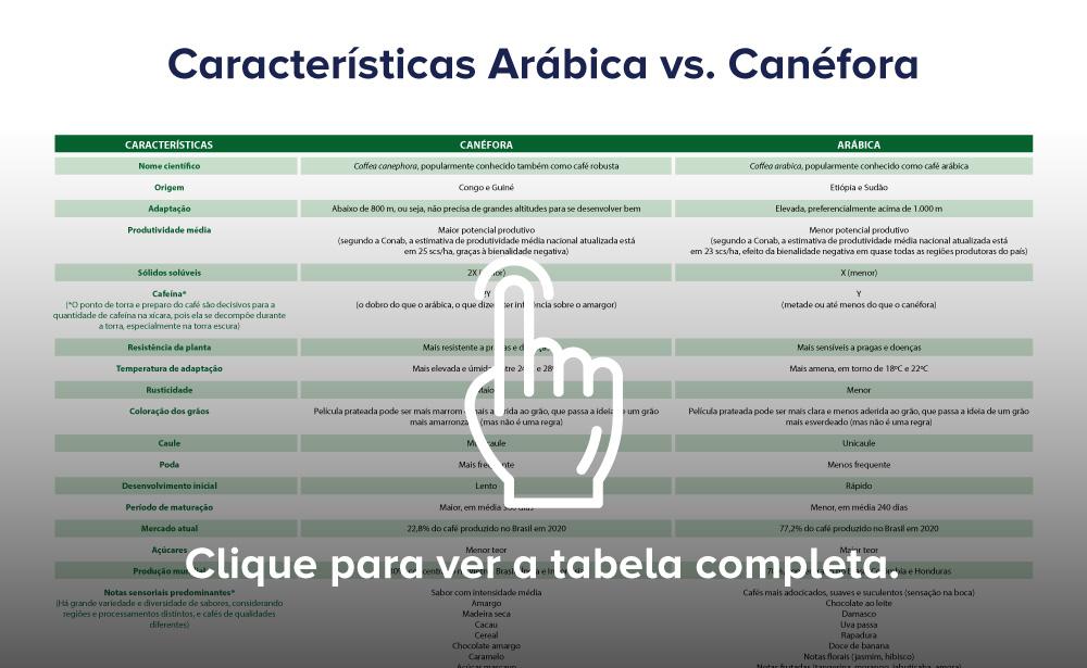 diferenças entre arabica e canefora