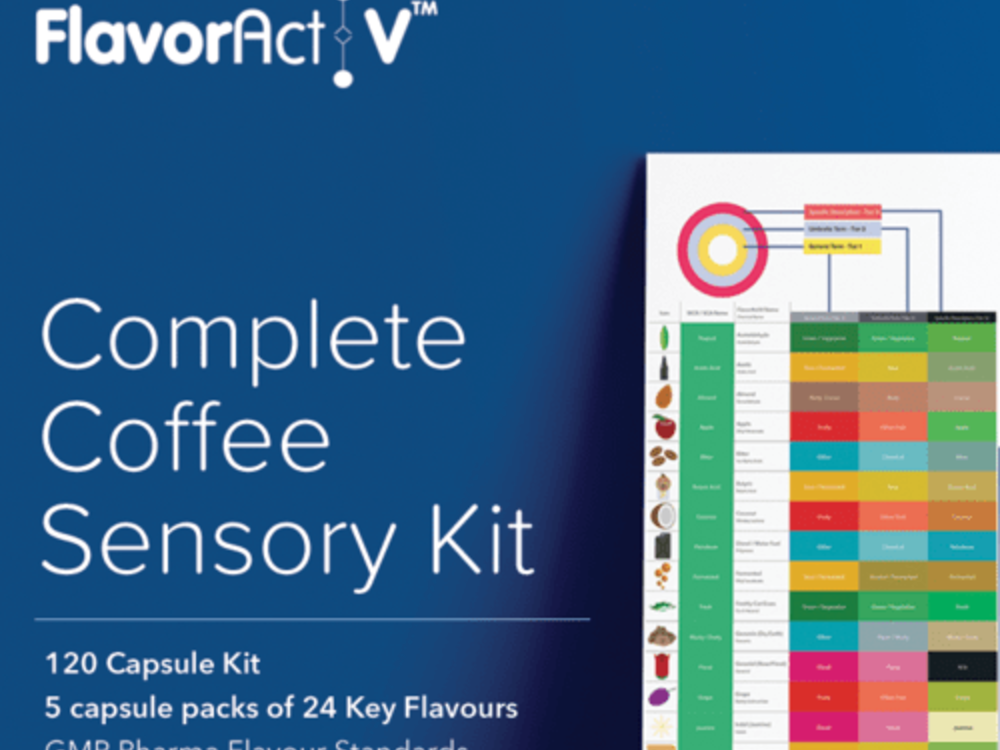 kit sensorial flavor