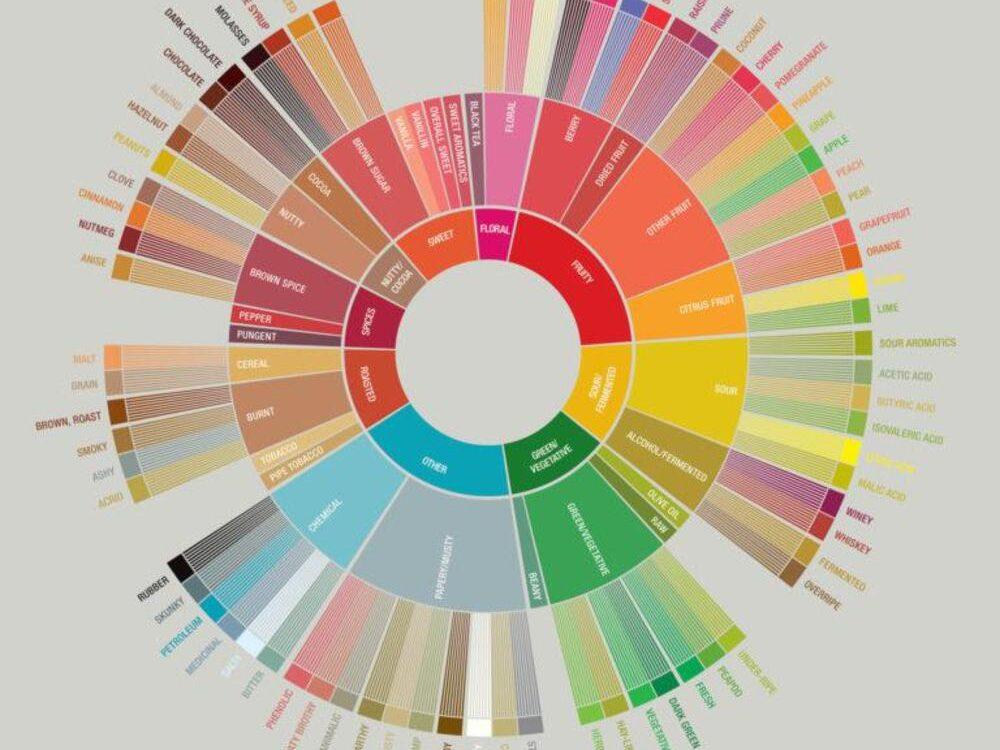 roda de aromas e sabores