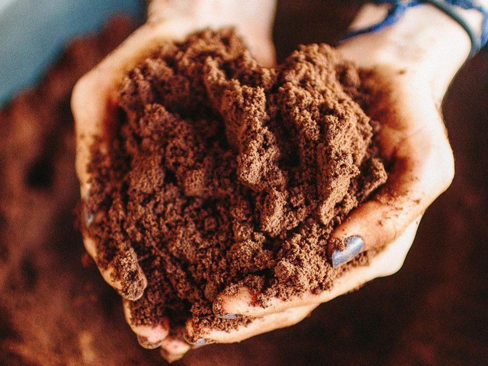 aproveitamento total do café