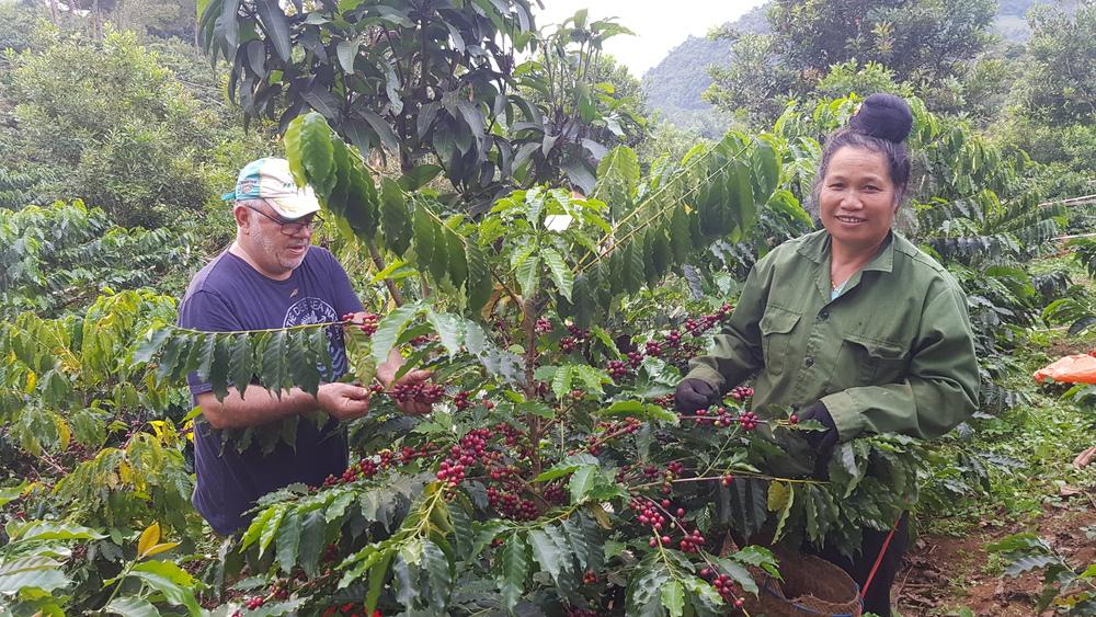 produtores de café Vietnã
