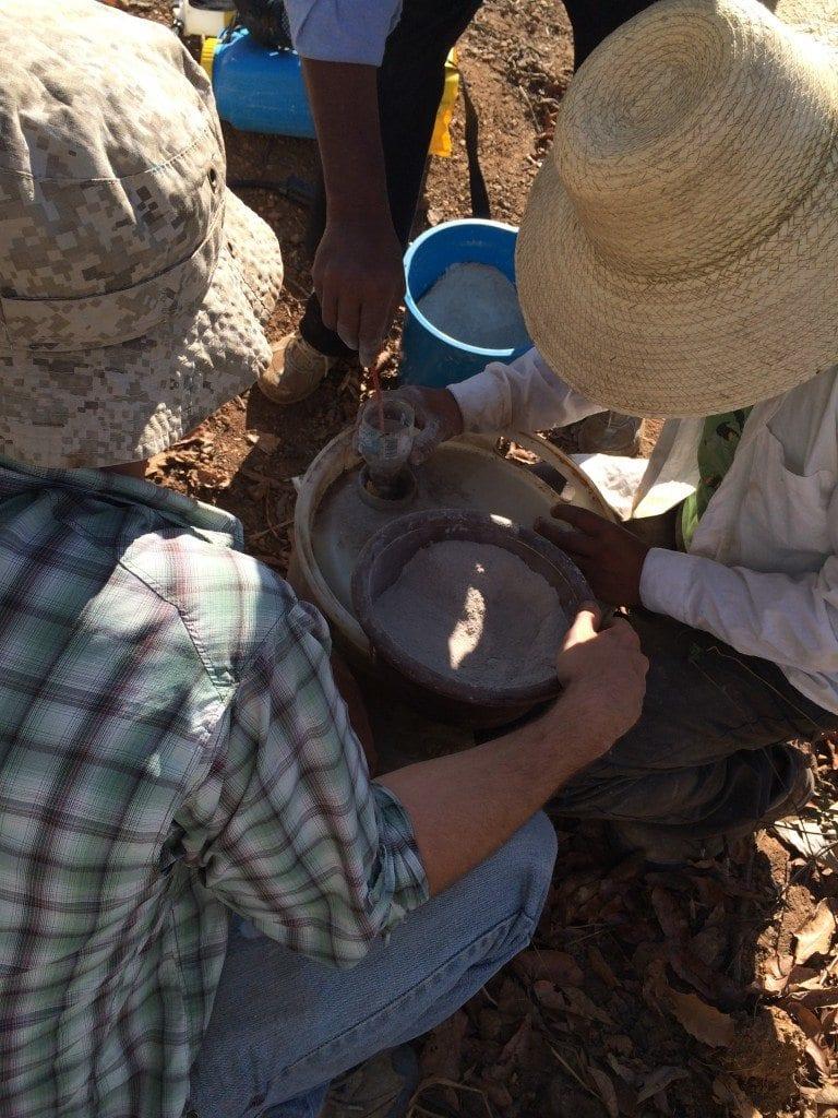 natural coffee pesticide for leaf rust la roya