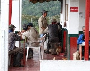Workers having lunch