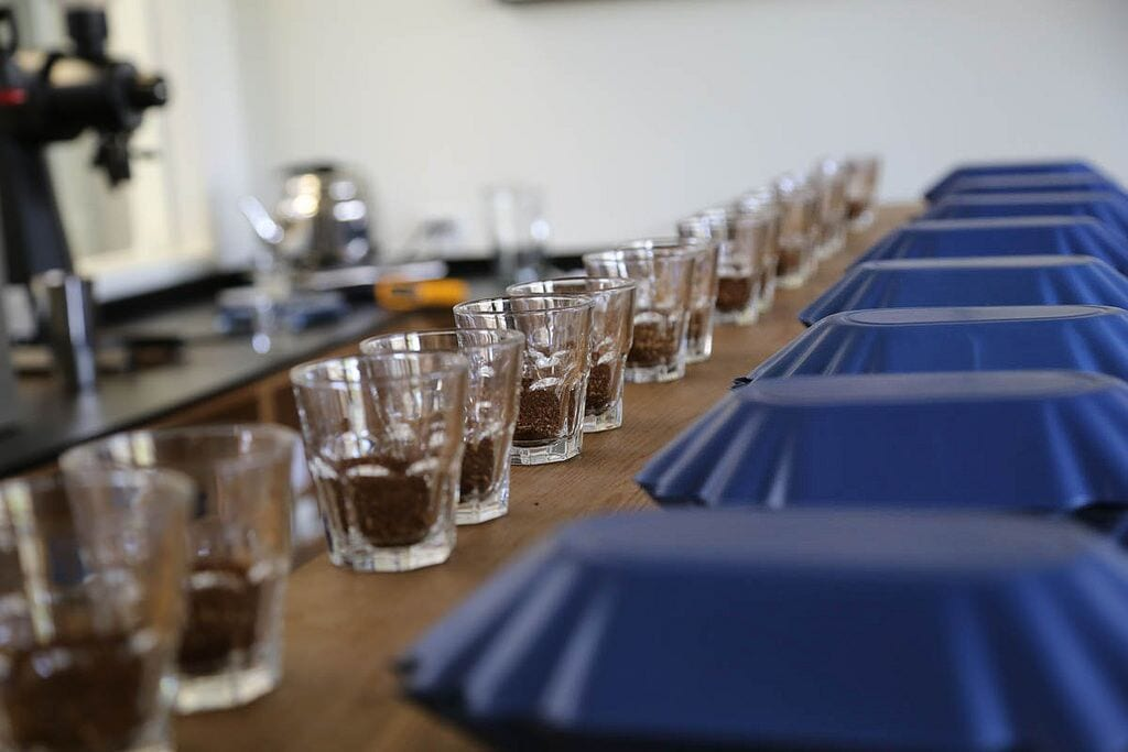 Cupping at Counter Culture Coffee