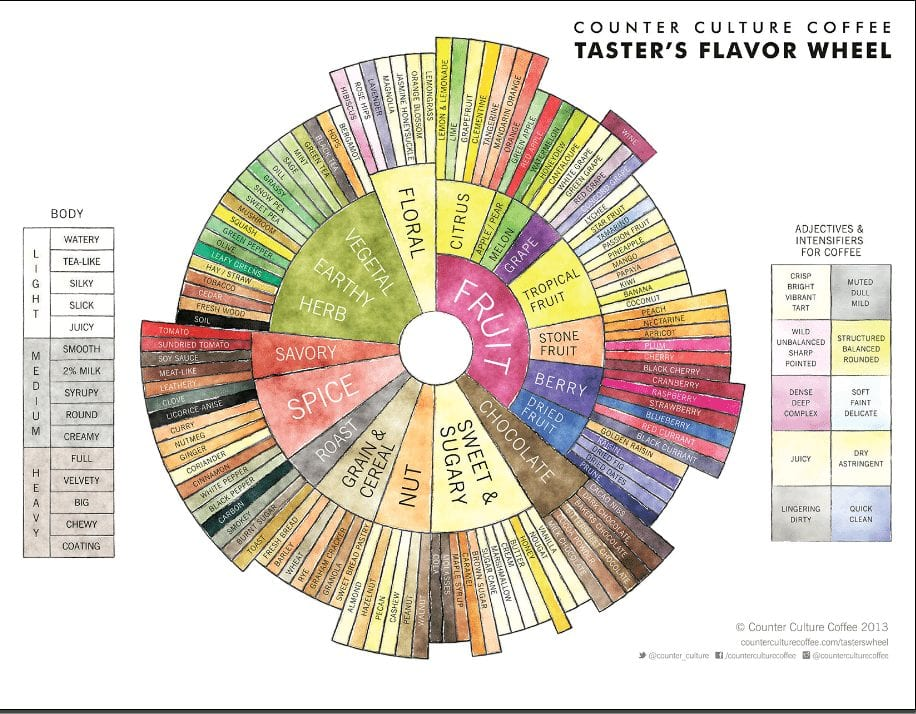 coffee flavour wheel.