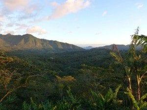 Nicaragua's spectacular mountainous landscape. Credit: Falcon Coffees