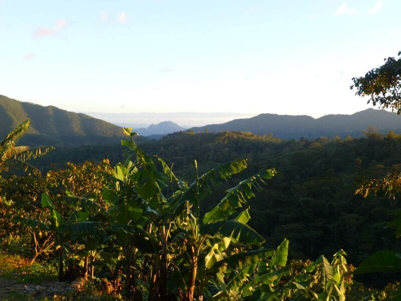 The view from Finca La Argentina.