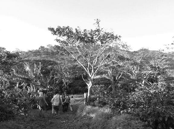 The Finca La Argentina farm.