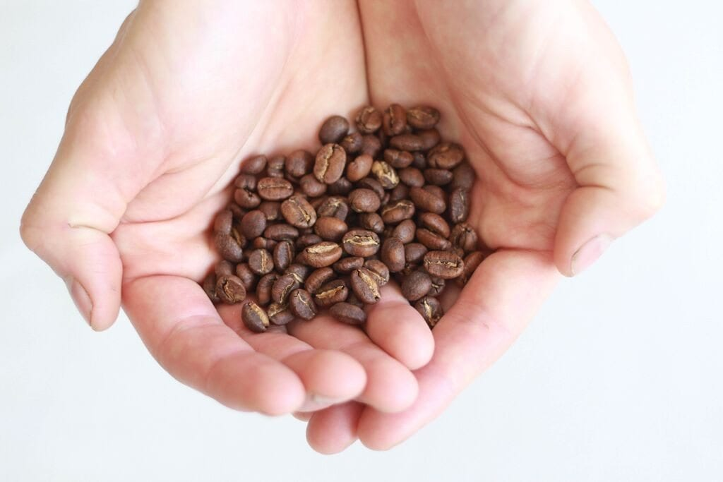Recently roasted and fresh beans