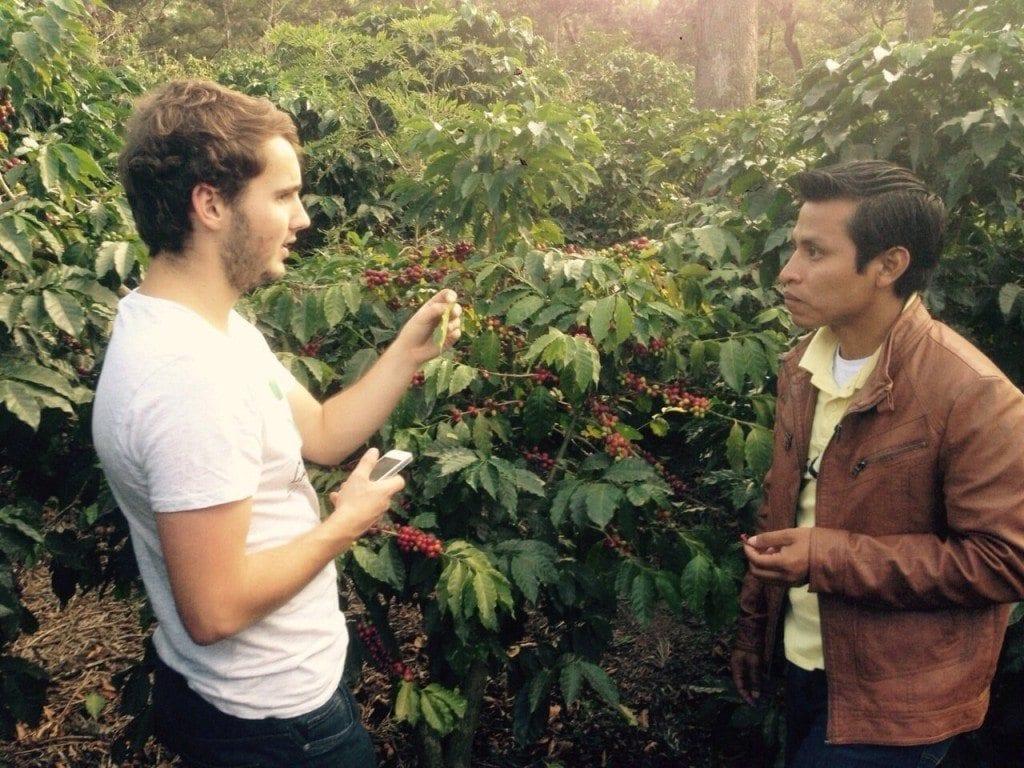 El Pino coffee farm, Cd. Vieja, Guatemala