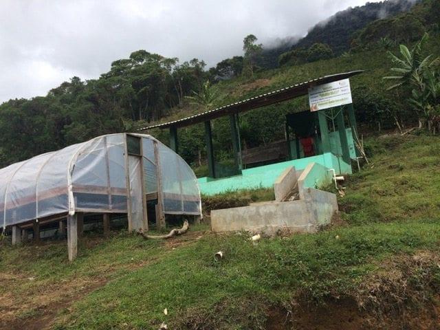 Beneficio San Vicente coffee farm