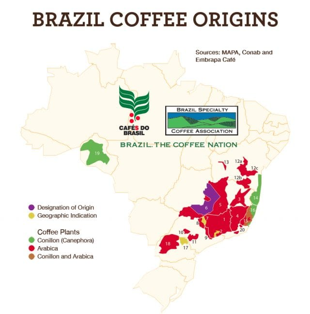 brazil coffee origins