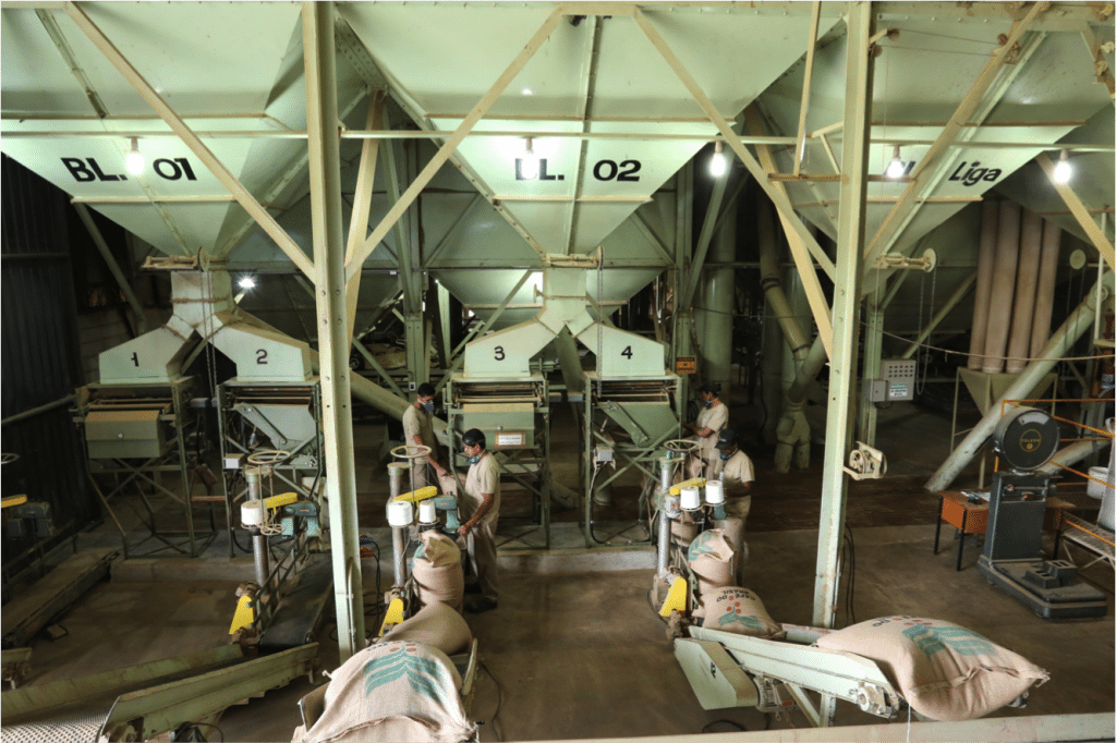 coffee sorting mill in brazil