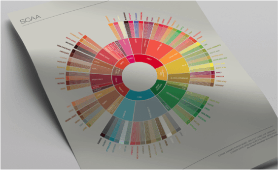 SCAA's revised Flavour Wheel