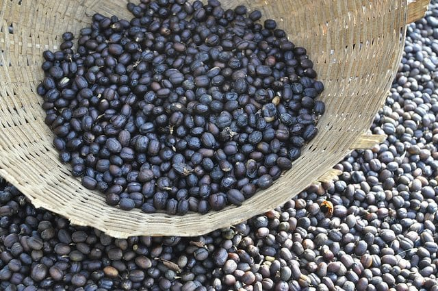 Ethiopian Yirgacheffe.