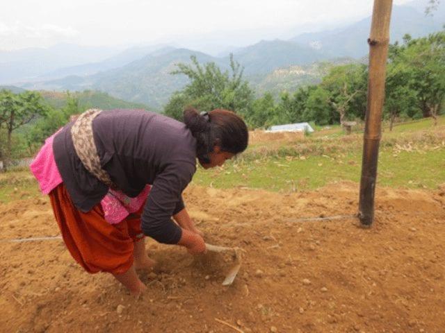 coffee worker in Nepal