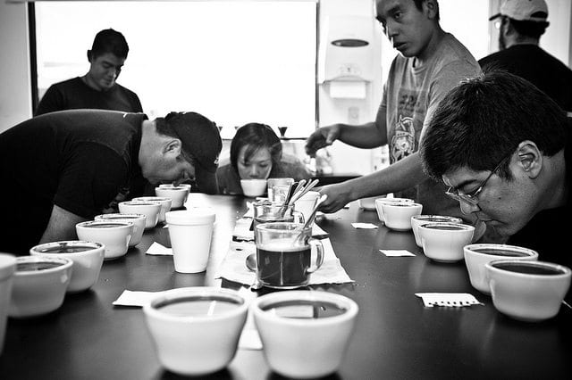 coffee cupping session