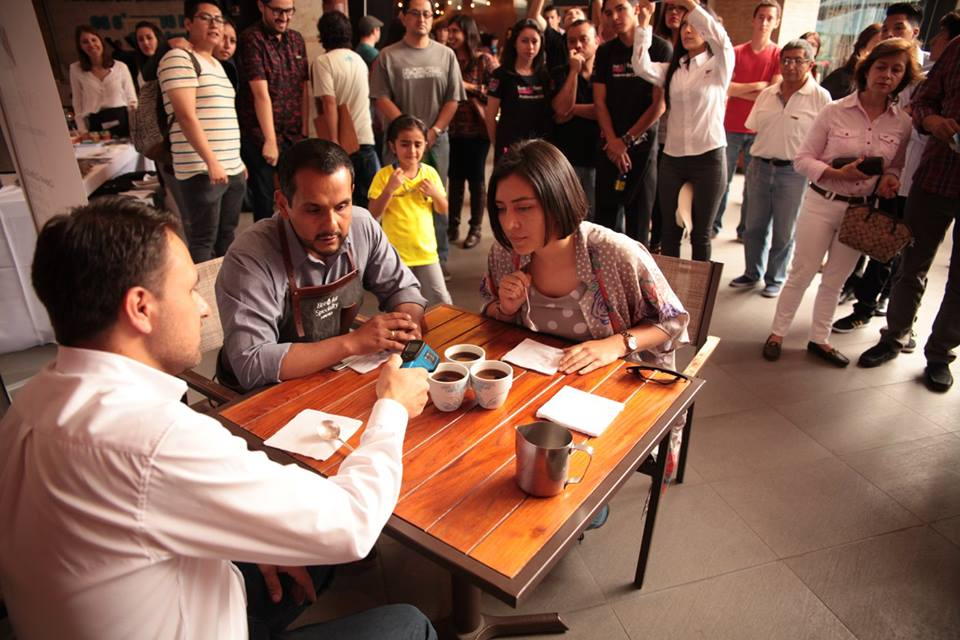 The coffees being judged