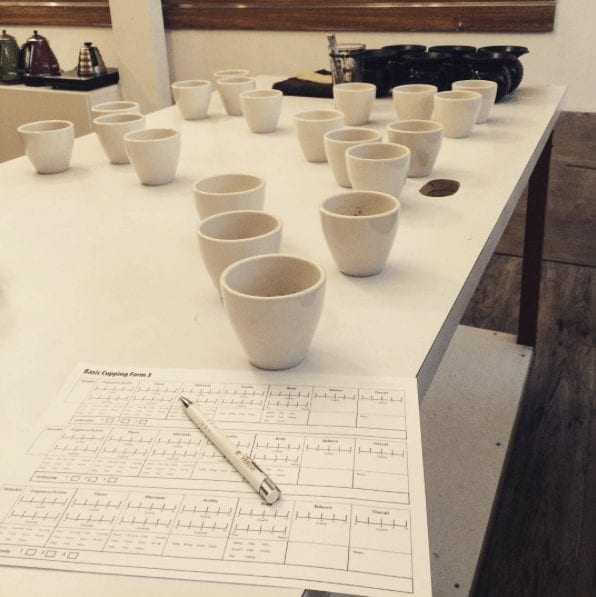 cupping-scores